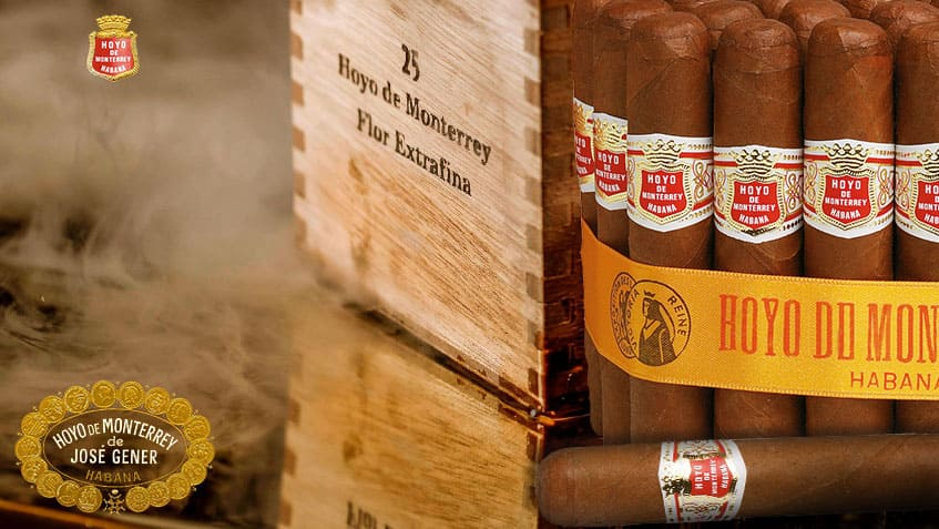 Hoyo de monterrey Brand of the month Cigars